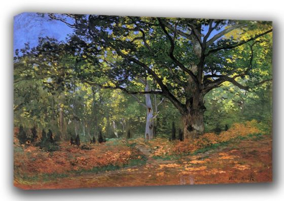 Monet, Claude: Bodmer Oak, Fontainbleau Forest. Fine Art Landscape Canvas. Sizes: A3/A2/A1 (00749)